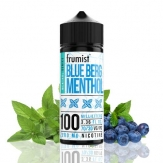 Blueberg Menthol 100ml - Frumist