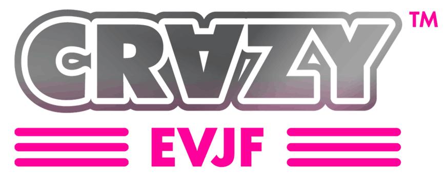 Femme EVJF Team Mari/ée Enterrement de Vie de Jeune Fille D/ébardeur
