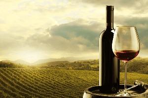 Weinverkostung  für meinen JGA in Milan | Junggesellenabschied