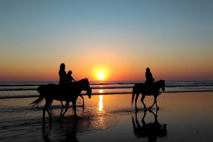 Enterrement de vie de jeune fille CRAZY EVJF Deauville balade à cheval sur la plage