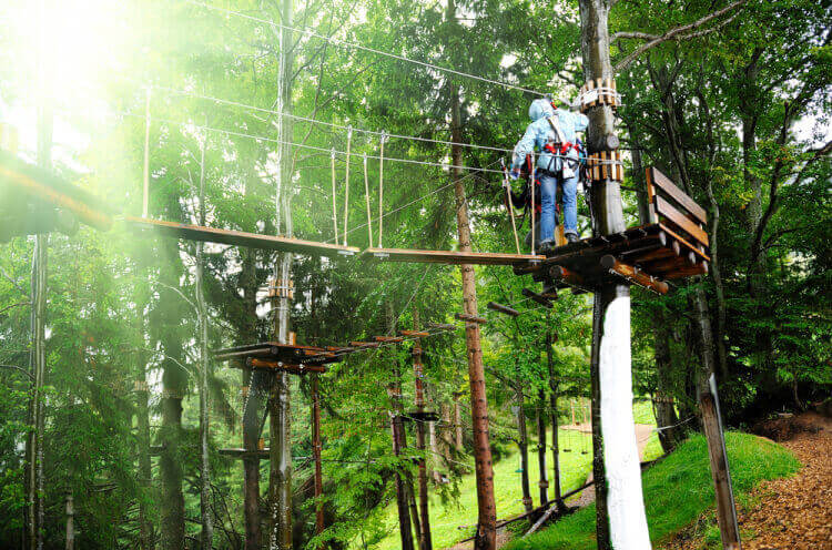 Treetop Adventure  for my Gdansk Hen Party | Maximise Hen Weekends