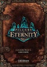 Pillars of Eternity (Champion Edition)