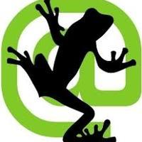 7338 screaming frog
