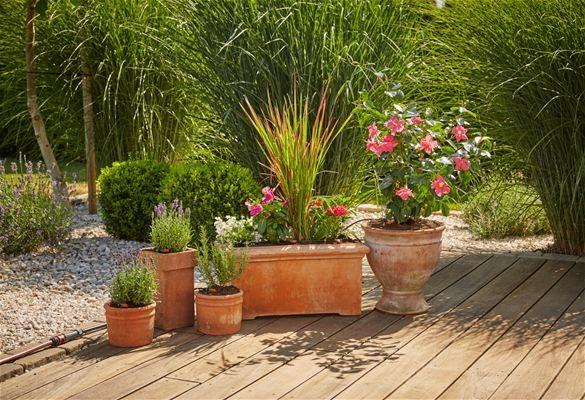 Gardena Startovací sada pro rostliny v květináčích M automatic