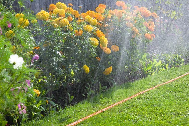 Gardena Hadicový zavlažovač, délka 7,5 m, oranžový
