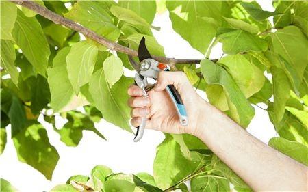 Gardena Hliníkové zahradní nůžky Comfort
