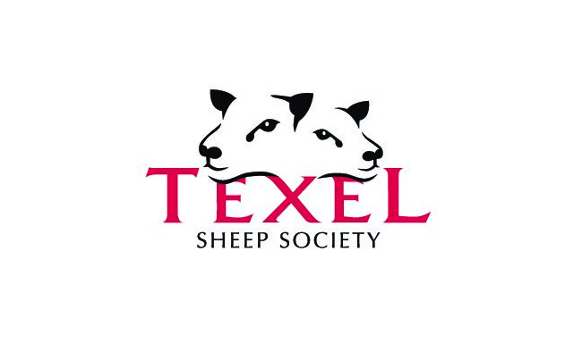 sheep_logo