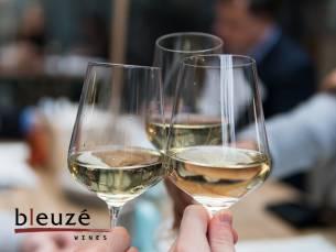 Wijnproeverij aan huis en 6 flessen wijn naar keuze van Bleuzé Wines!