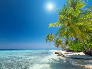 Luxe 4*-resort bij Willemstad op het tropische Curaçao incl. vlucht en transfer