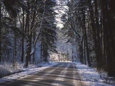 Singlereis Kerst Wandelen in de Weerribben