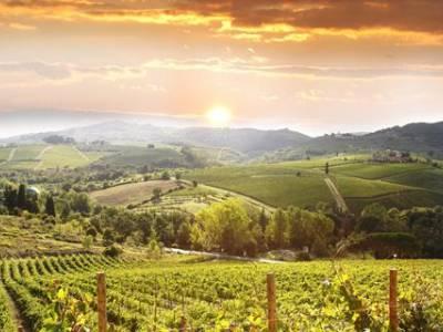 8-daagse rondreis Toscane, Umbrië en Rome - Bologna
