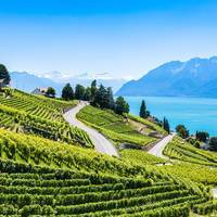 10-daagse busreis Het Meer van Genève, Leysin