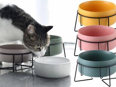 Waterbak of voerbak voor hond en kat
