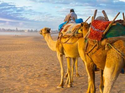 8 daagse cruise Canarische Eilanden met Agadir