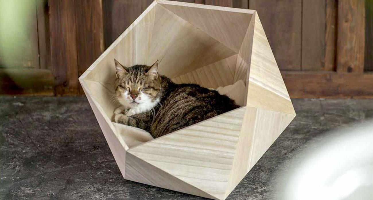 Le cucce di design giapponese che rendono felici i vostri for Cucce per gatti da esterno coibentate