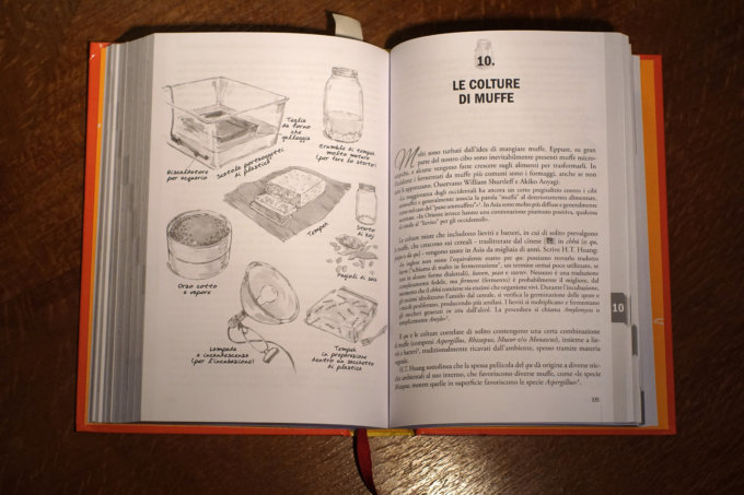 Grande Libro della fermentazione 2