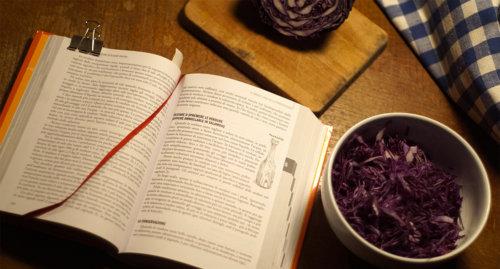 Grande-libro-fermentazione 000