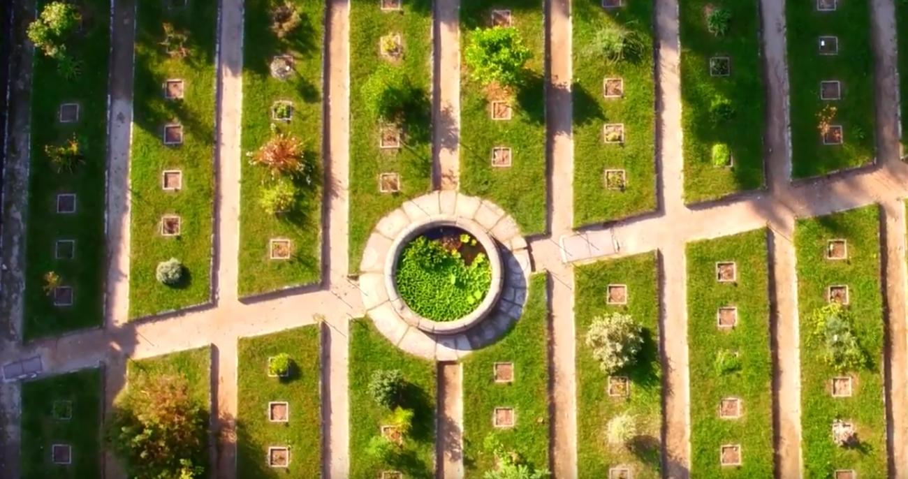 L'Orto Botanico dell'Università di Pisa è un luogo magico in cui scoprire la natura che diamo per scontata