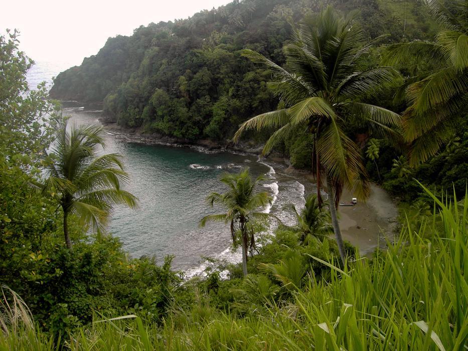 L'isola di Dominica vuole diventare la prima nazione senza plastica al mondo