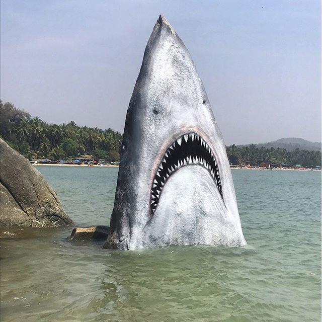 Lo squalo disegnato da Jimmy Swfit
