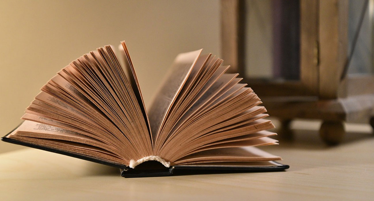 In Olanda, per un weekend se hai un libro con te viaggi gratis in treno