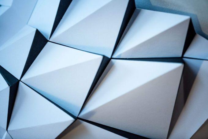 Un dettaglio dei poligoni che compongono il lupo di carta