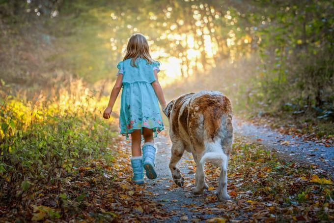 """<a href=""""https://pixabay.com/photos/child-dog-forest-autumn-childhood-3900393/"""" target=""""_blank"""" rel=""""noopener noreferrer"""">via</a>"""