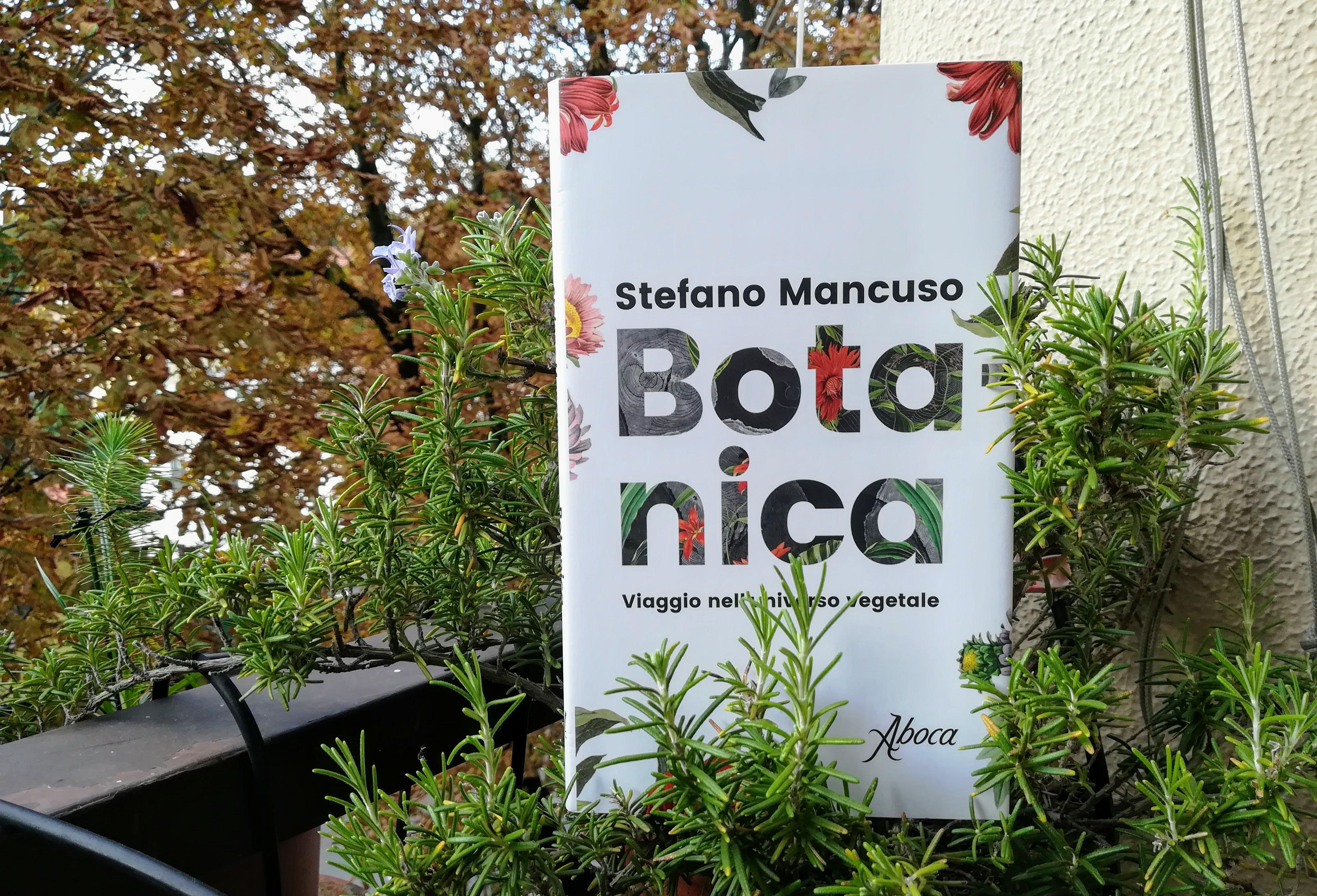Tutto quello che sapete sulle piante è sbagliato, lo dice Stefano Mancuso