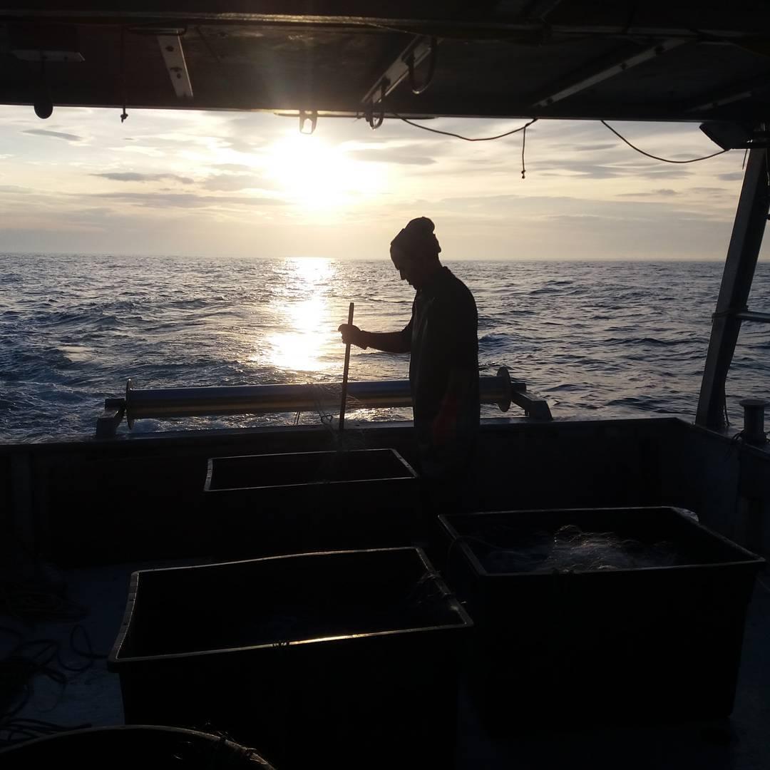 Per salvaguardare il mare bisogna collaborare con i pescatori