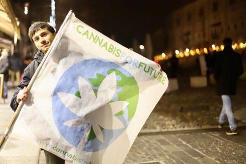 """La bandiera di """"Cannabis for Future"""""""