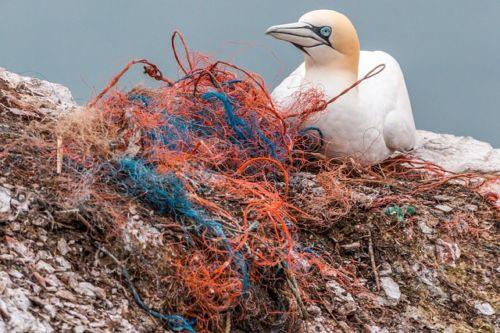 Le reti da pesca sono il primo elemento per quanto riguarda l'inquinamento da plastica nel mare