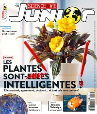 magazine science et vie junior en abonnement. Black Bedroom Furniture Sets. Home Design Ideas