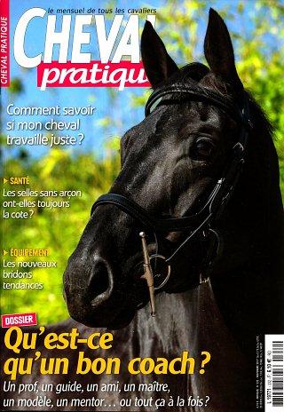 Cheval Pratique - N°332
