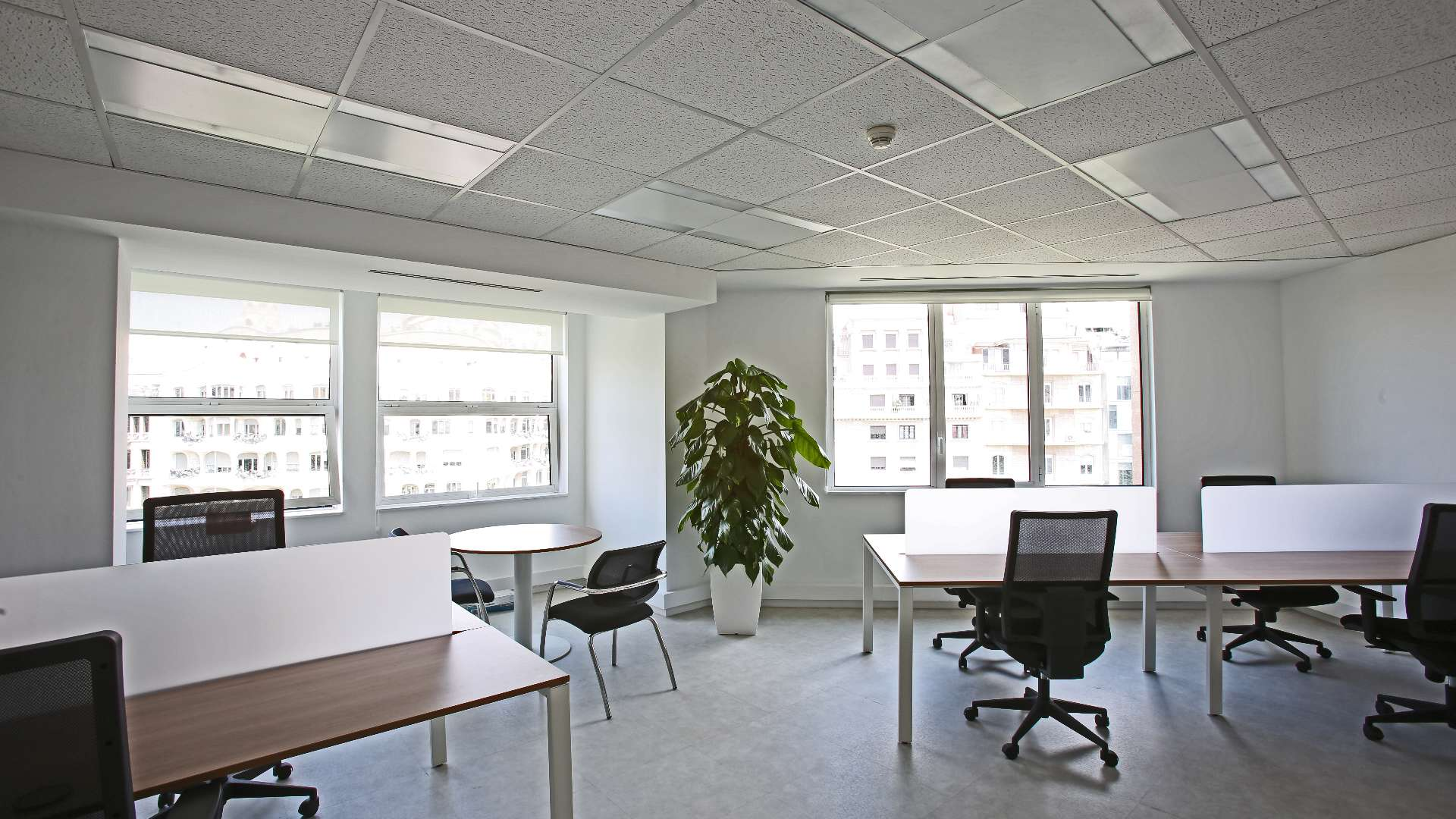Picture of Paseo de Gracia - Coworking, a desk in the undefined undefined