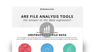 Are file anaysis tools the answer to the data explosion?
