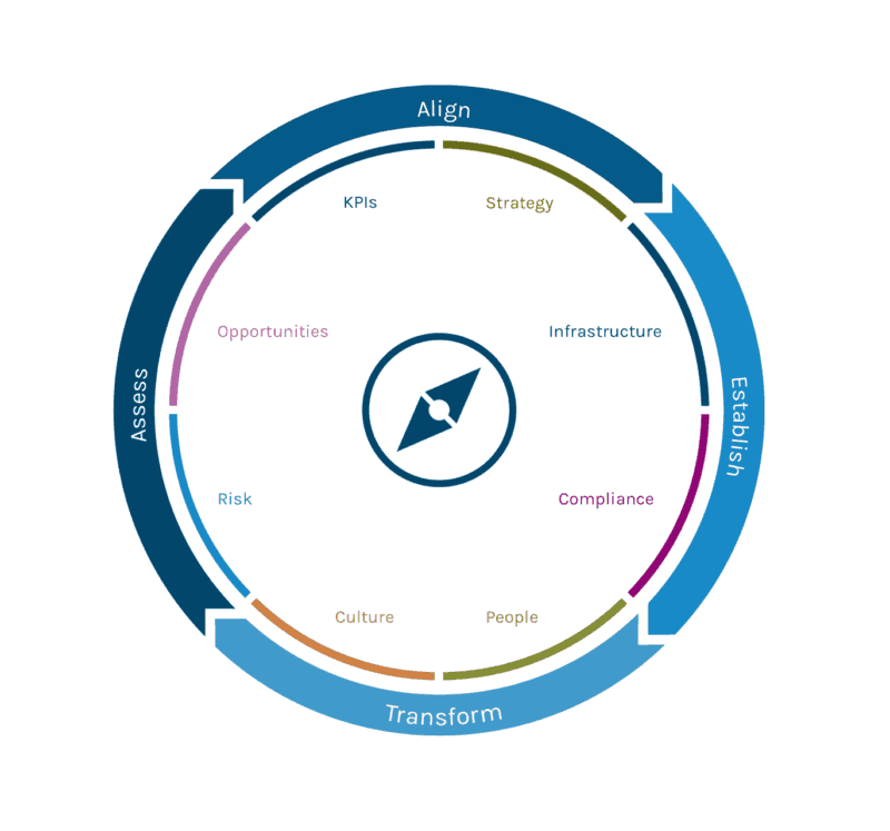 Discerning Digital Transformation Process