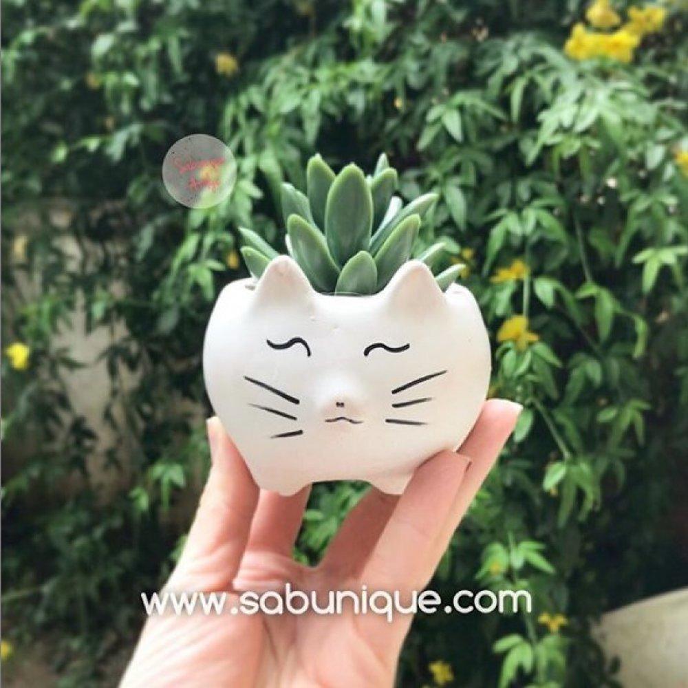 Kedi Saksı Silikon Kalıbı