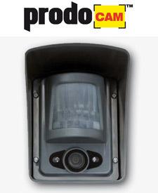 Caméra infrarouge de détection d'intrusion