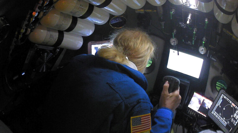 Undersea explorer Victor Vescovo pilots the submarine DSV Limiting Factor in the Pacific Ocean's Mariana Trench in an undated still image from video released by the Discovery Channel May 13, 2019. Atlantic Productions for Discovery Channel/Handout via REUTERS. ATTENTION EDITORS - THIS IMAGE WAS PROVIDED BY A THIRD PARTY. NO ARCHIVE. NO RESALES. MANDATORY CREDIT. (Foto: REUTERS)
