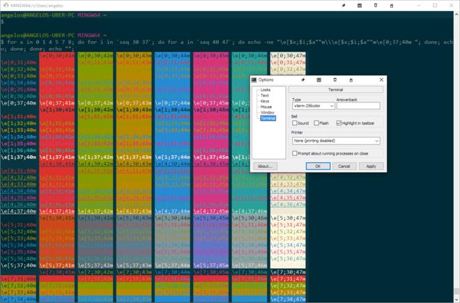 Screenshot #4: MinTTY terminal emulator window