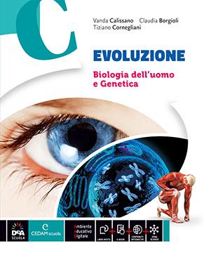 EVOLUZIONE vol C