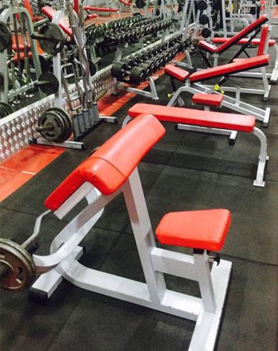 Stamina Gym