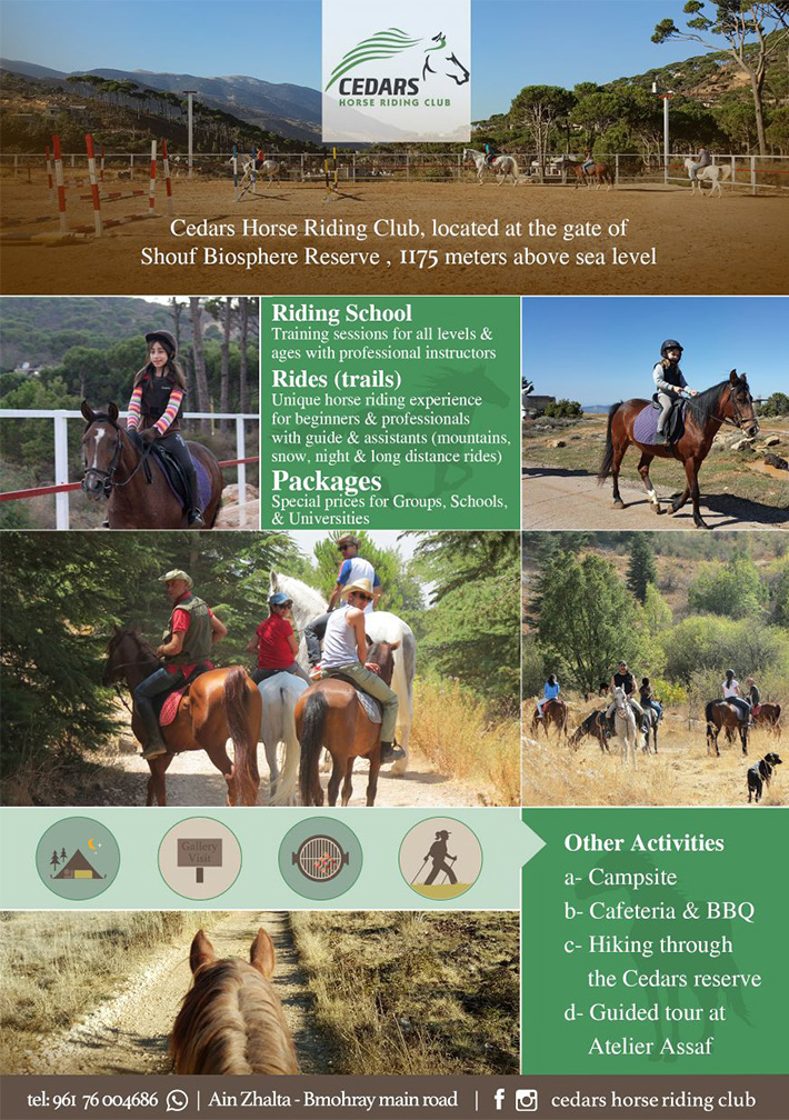 Cedars Horse Riding Club