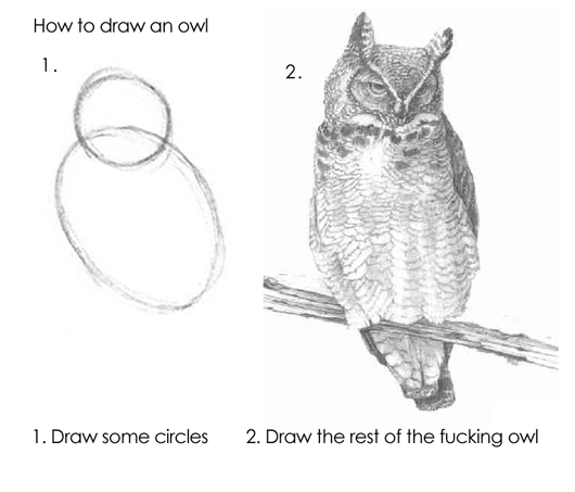 How to draw an owl: Lessons in becoming an expert in a couple of easy steps