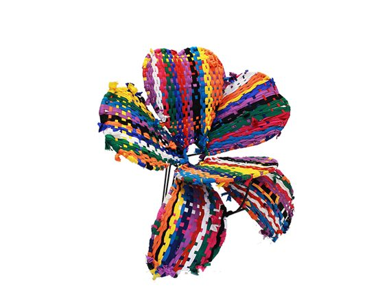 Fiore (multi-color), Spazzapan