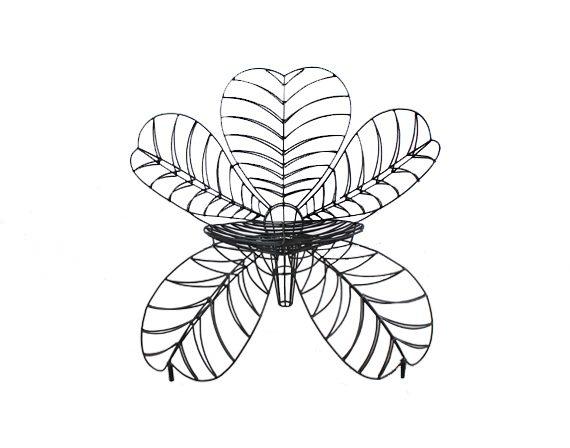 Fiore (minimal), Spazzapan