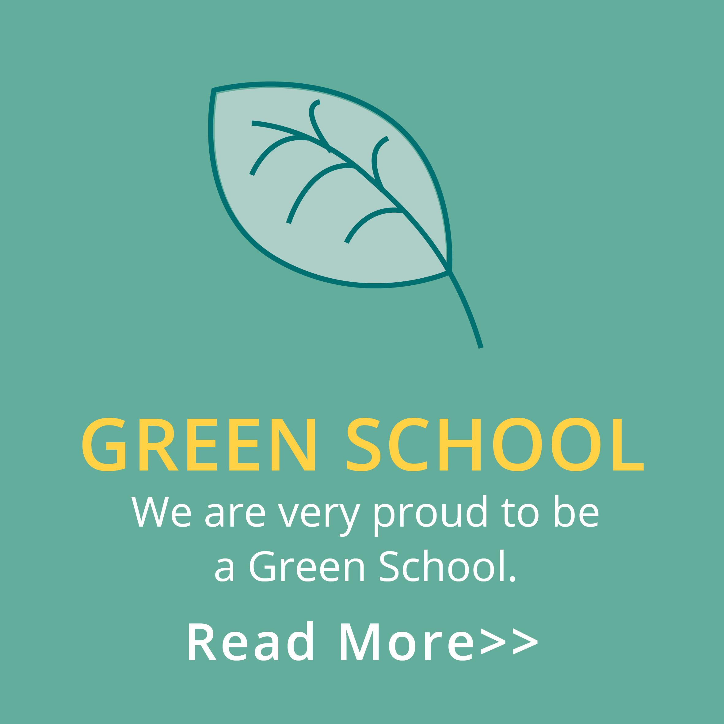 DNS_green_school