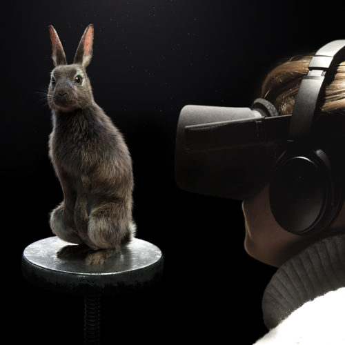 PETA EYE TO EYE Virtual Reality Dialog