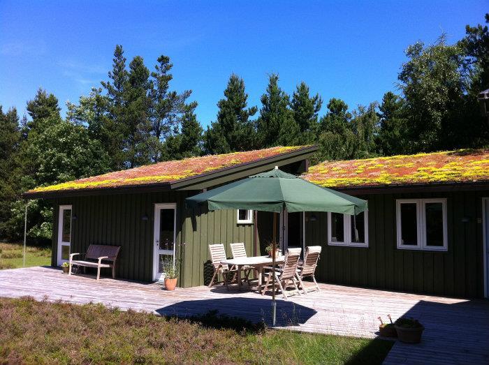 hus med grønt tag