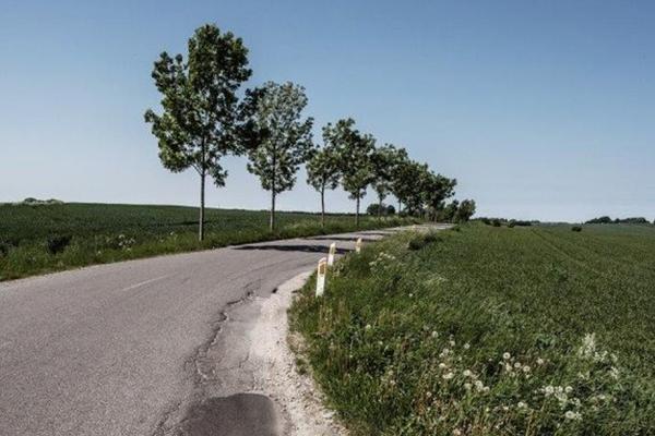 Rekorddårlige veje koster milliarder – ny løsning kan minimere omkostninger